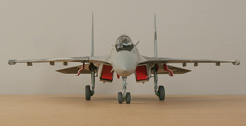 http://www.flankers-site.co.uk/model_su-35_files/su-35_057.jpg